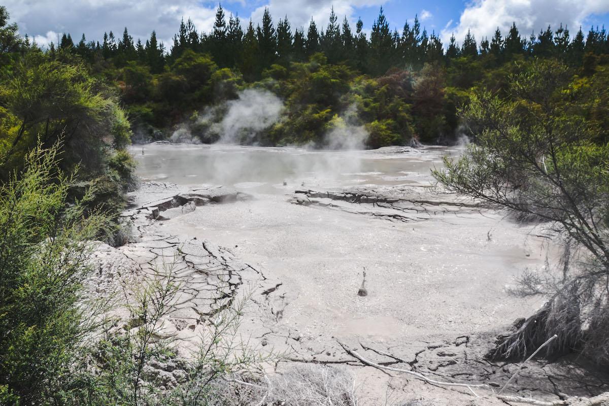 Wai-O-Tapu-Rotorua-4
