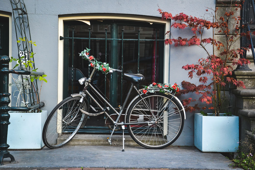 Blumen-Fahrrad-Amsterdamm