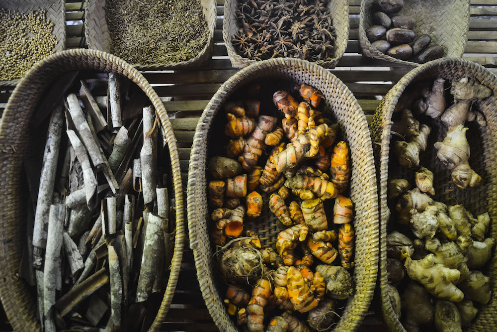 Kaffeeplantage-Ubud
