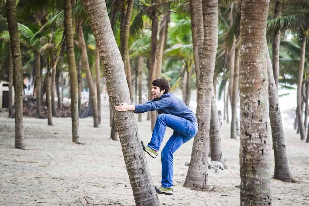 Vietnam Palme besteigen