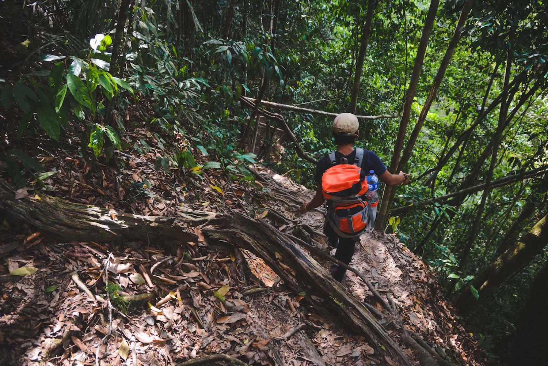 Bukit-Lawang-Jungle-Trekking-2
