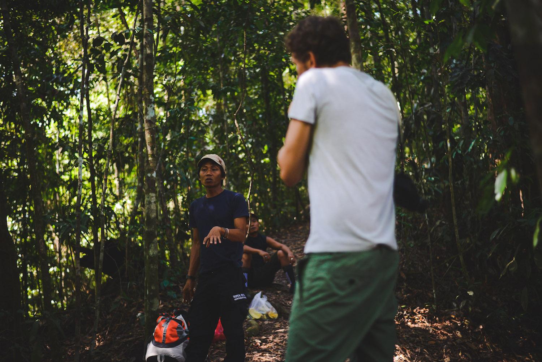 Bukit-Lawang-Tschungel-Treck-2