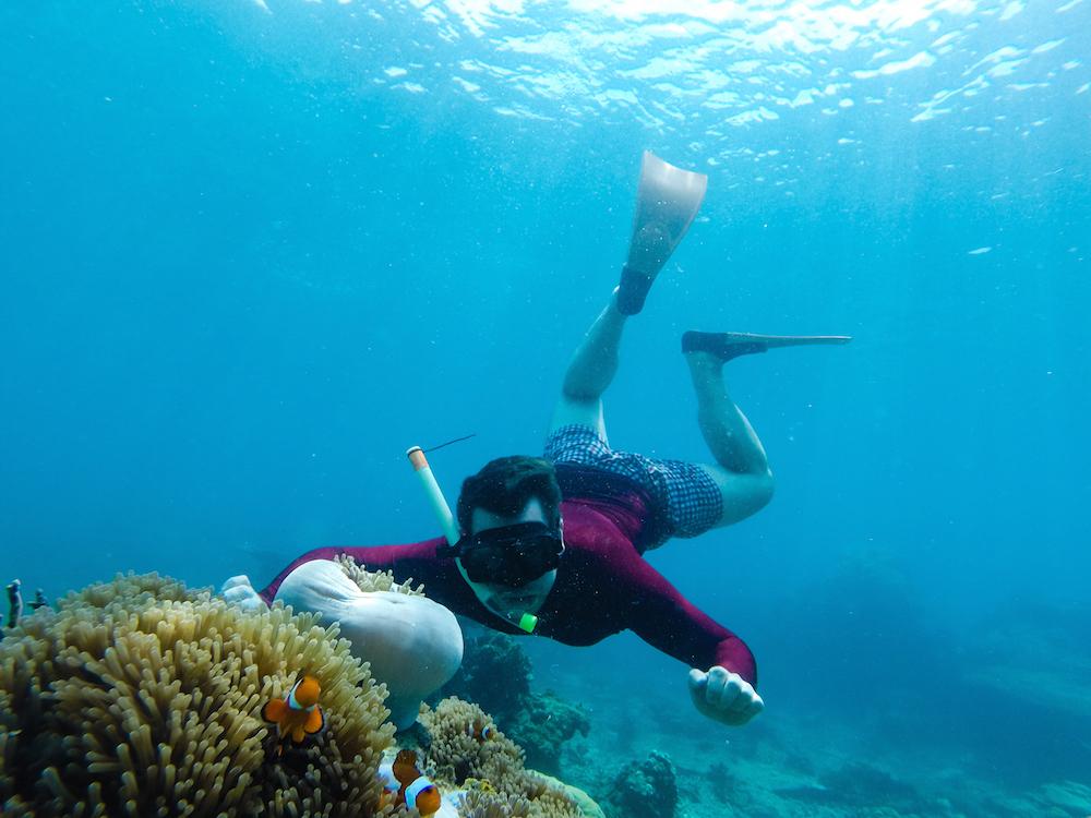 Perhentian Kecil Unterwasserwelt