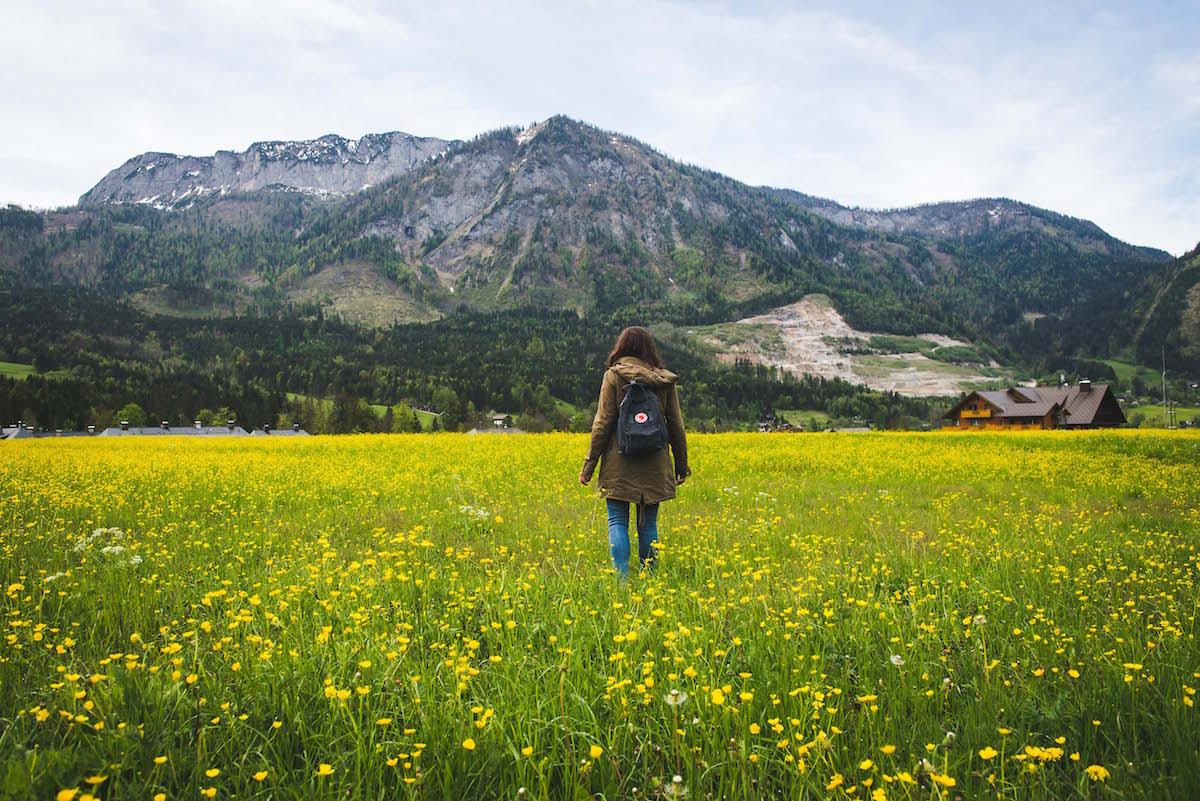 Blumenwiese-Frühling-Steiermark