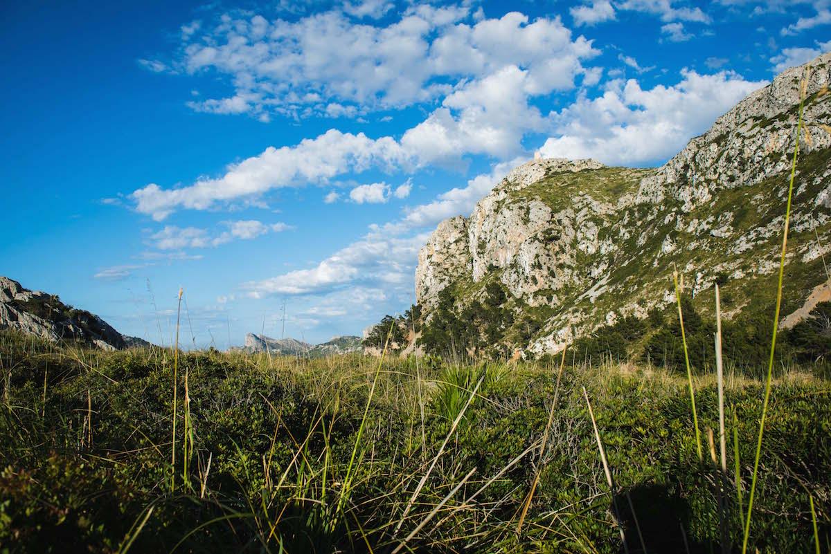Beeindruckende-Landschaft-Mallorca
