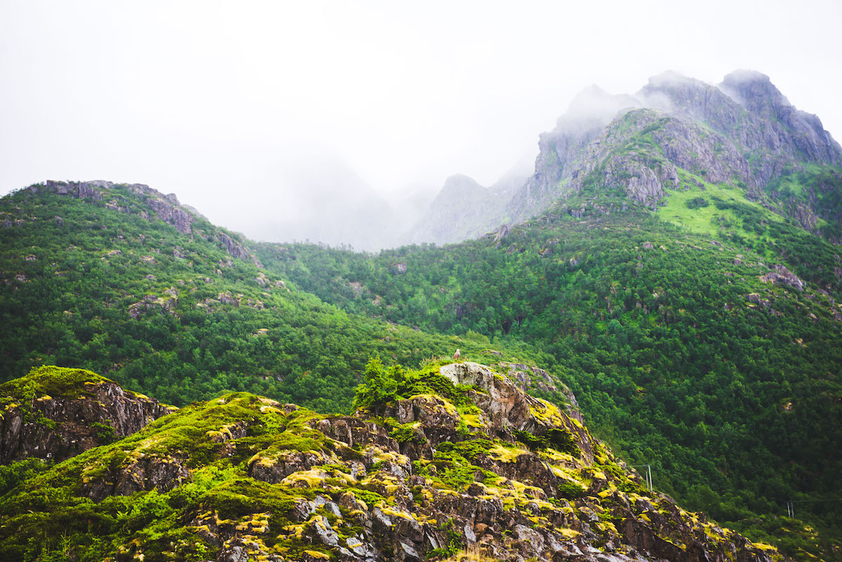 Norwegen-Nebellandschaft