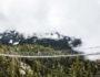 Sea to Sky Gondola Suspension Bridge