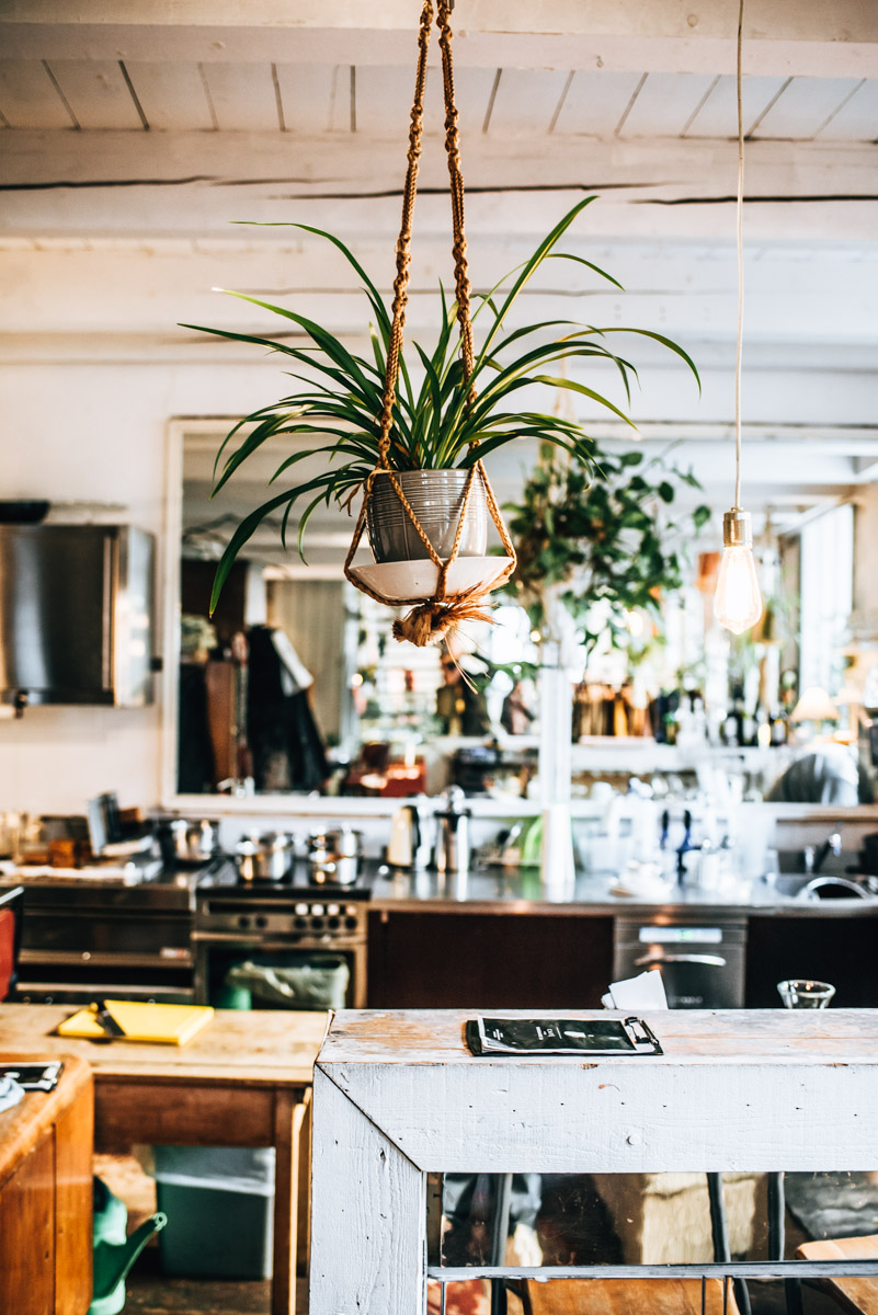 Burggasse24 Cafe