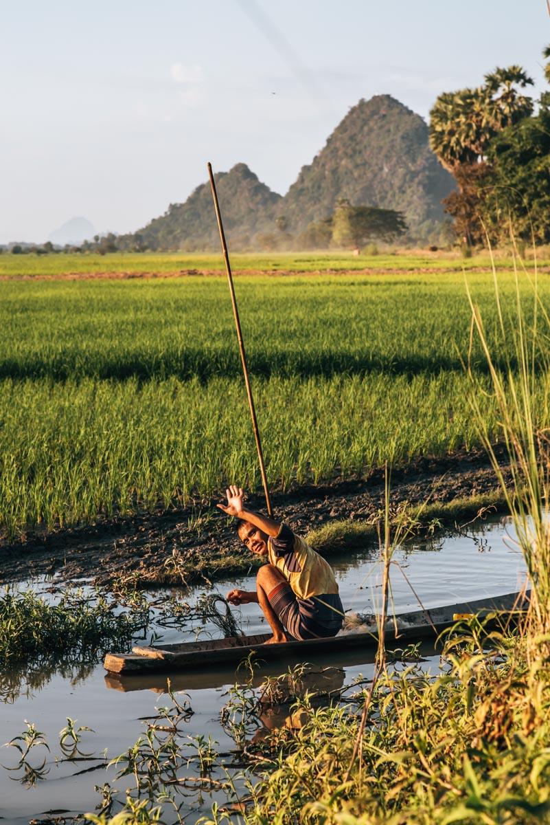 Hpa an Reisfelder Tipps