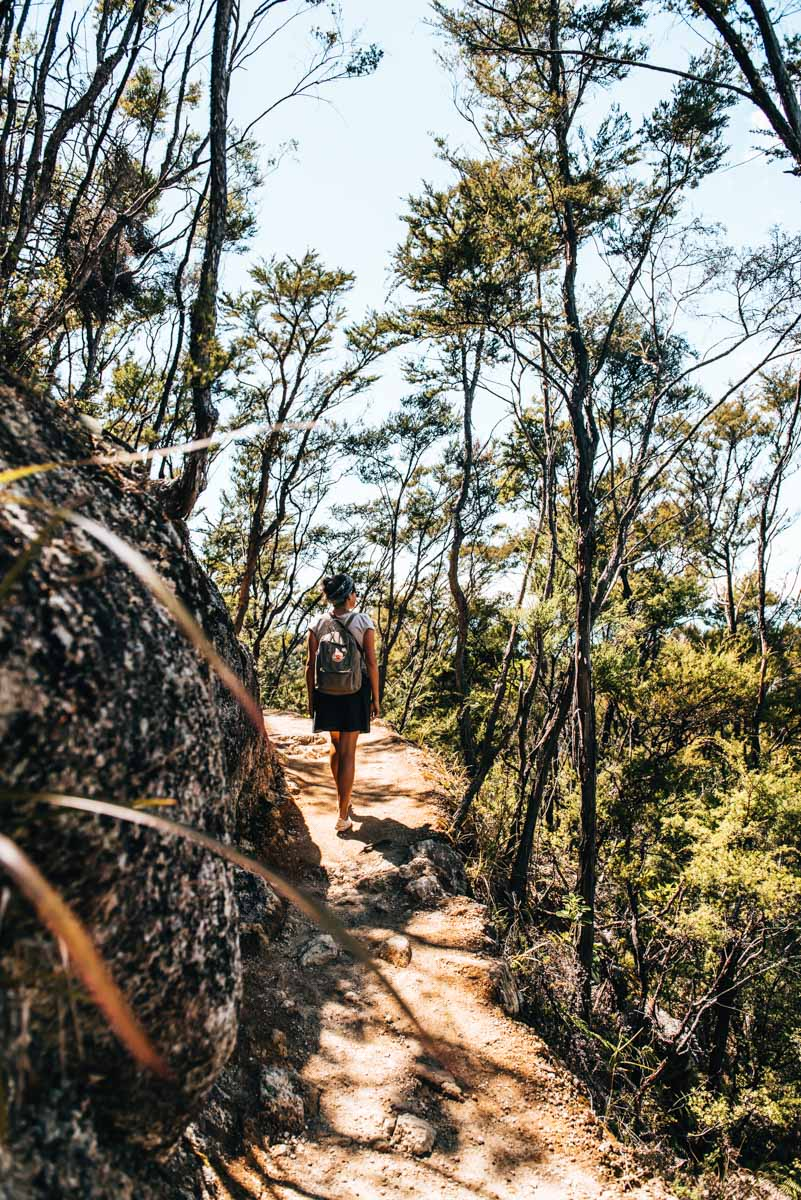 Abel Tasman Tageswanderung