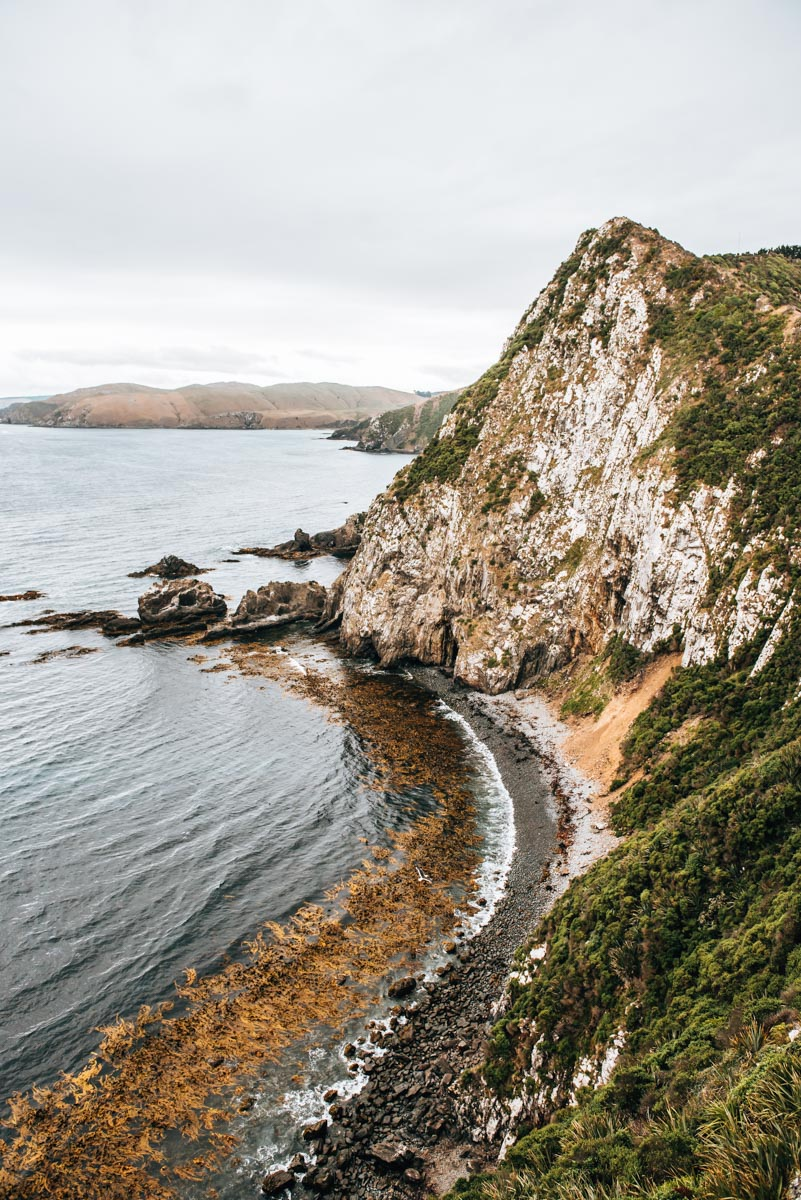 Nugget Point New Zealand