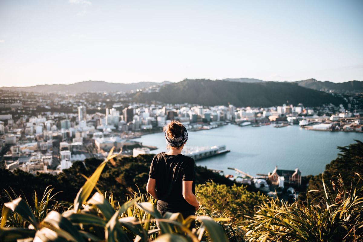 Attractions Wellington
