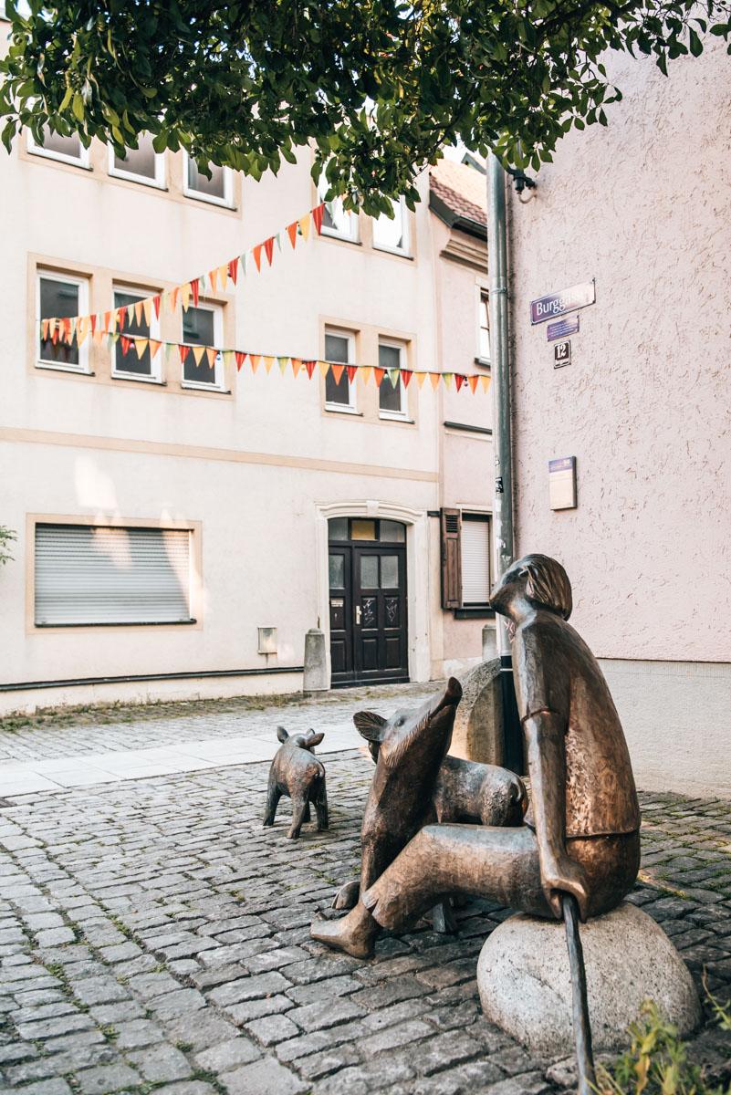 Schweine Nase Schweinfurt