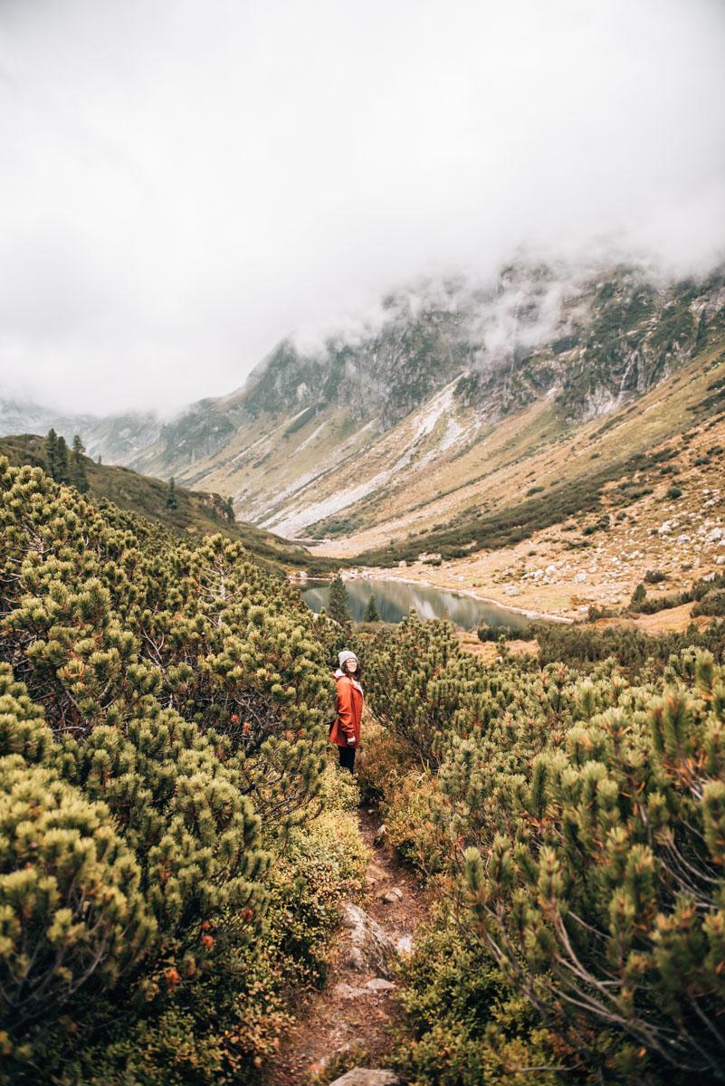 Wanderung Wiegenwald