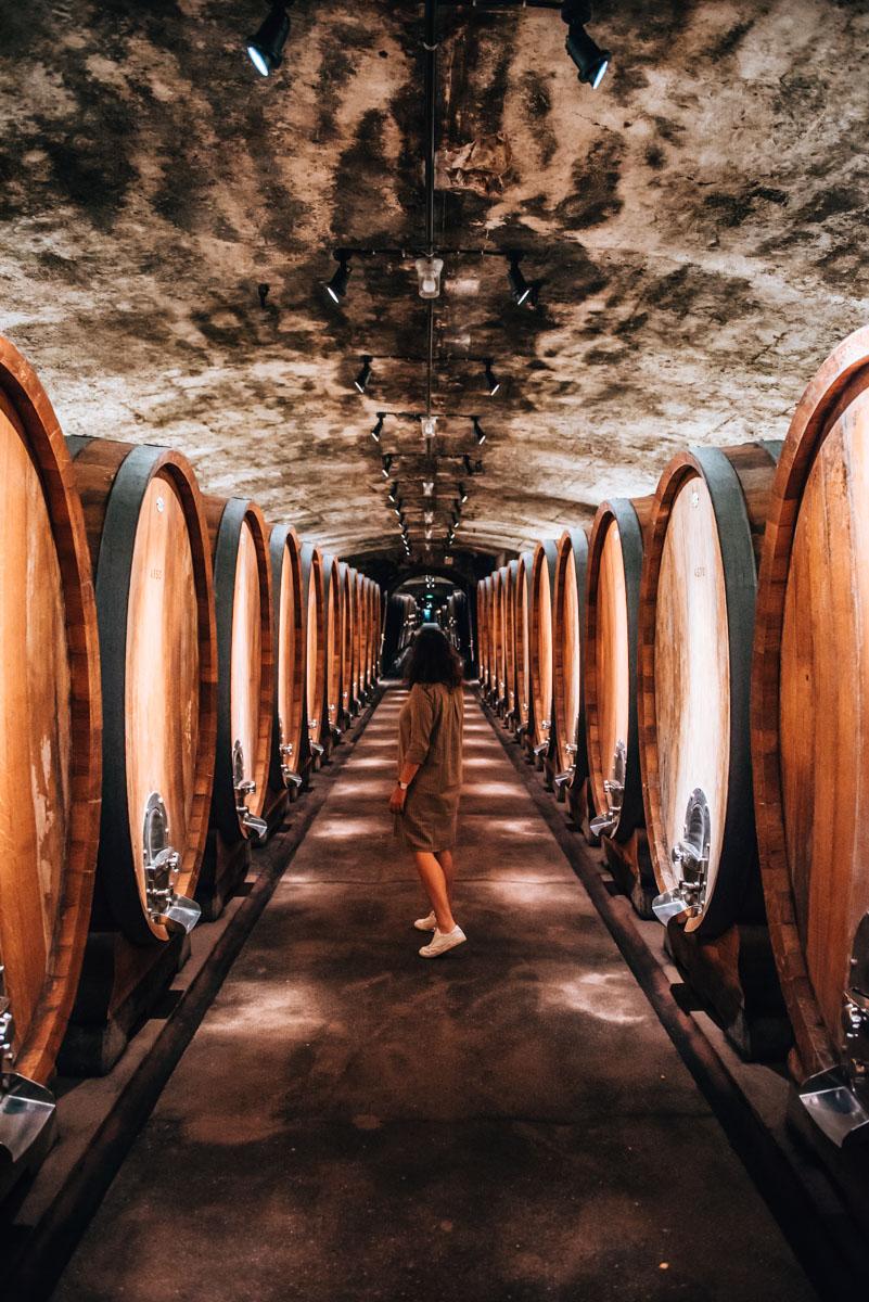 Weinkeller Weingut Juliusspital