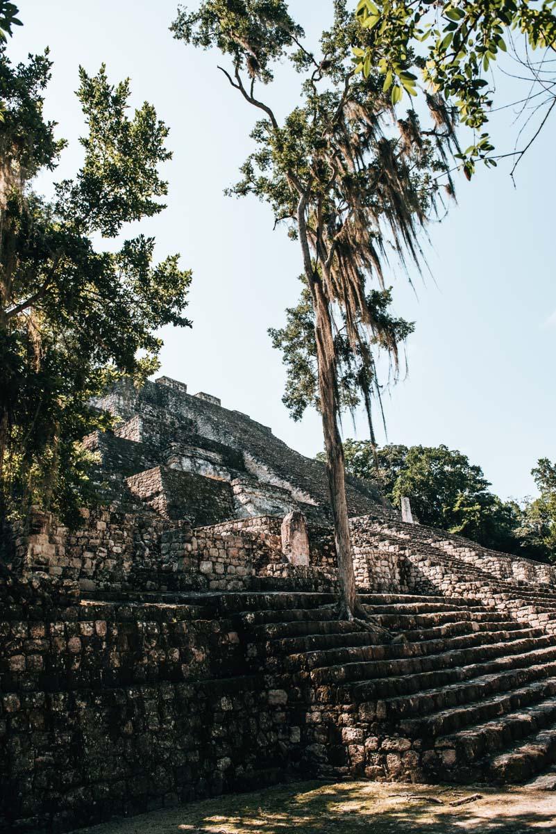 Calakmul Estructura