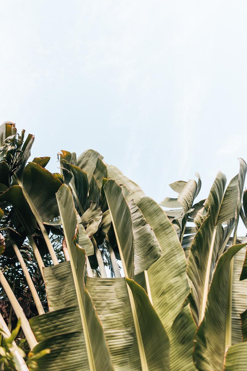Holbox Yucatan