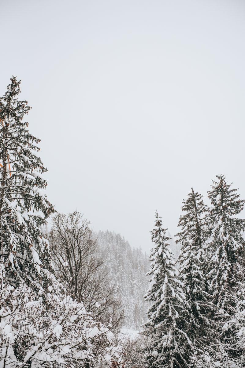 Leogang Schneehöhe