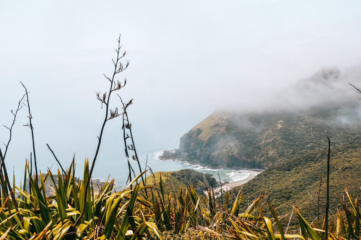 Cape Reinga Anreise