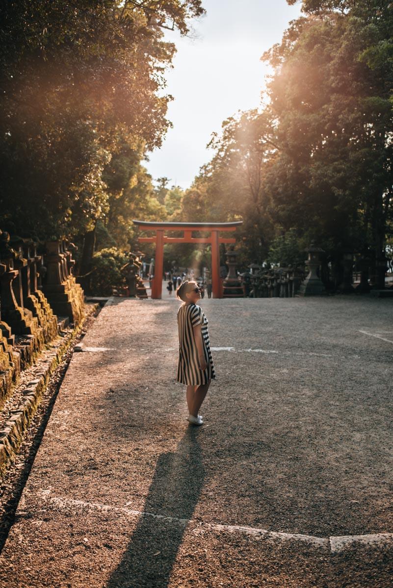 Nara Sunset Tips