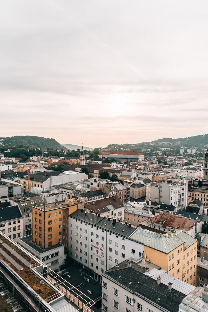 Sinnesrausch Linz Tipps