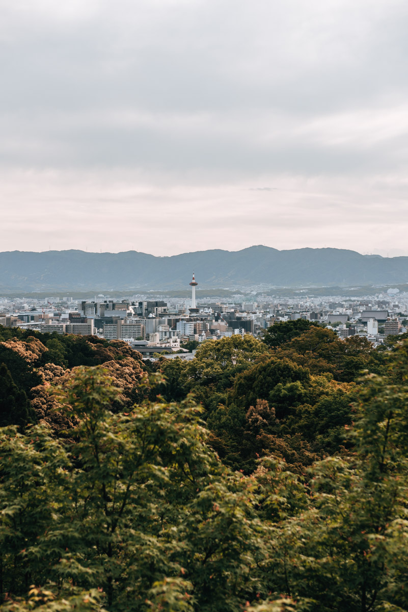 Kyoto Viewpoint