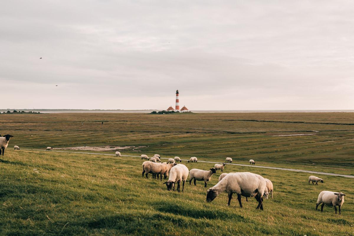 Leuchtturm St Peter Ording