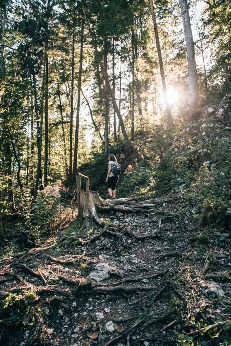 Myrafälle Niederösterreich Wandern