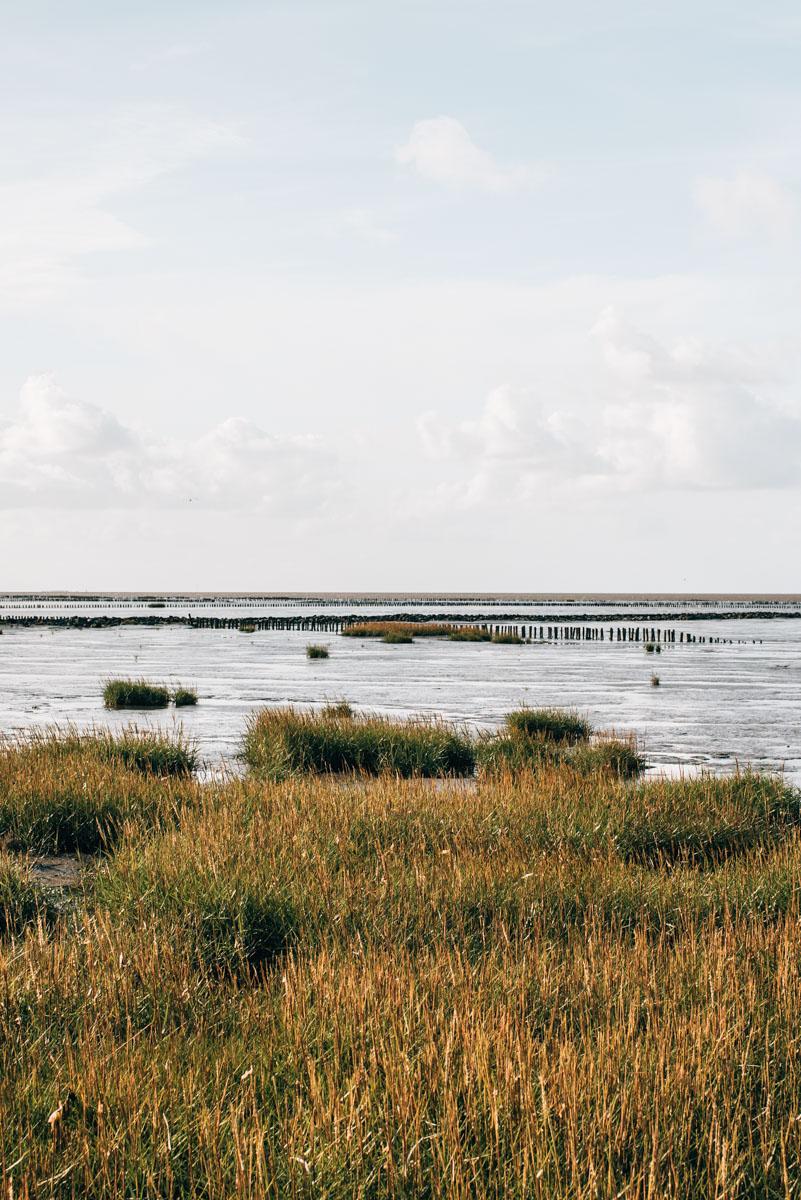 Trischendamm Nordsee