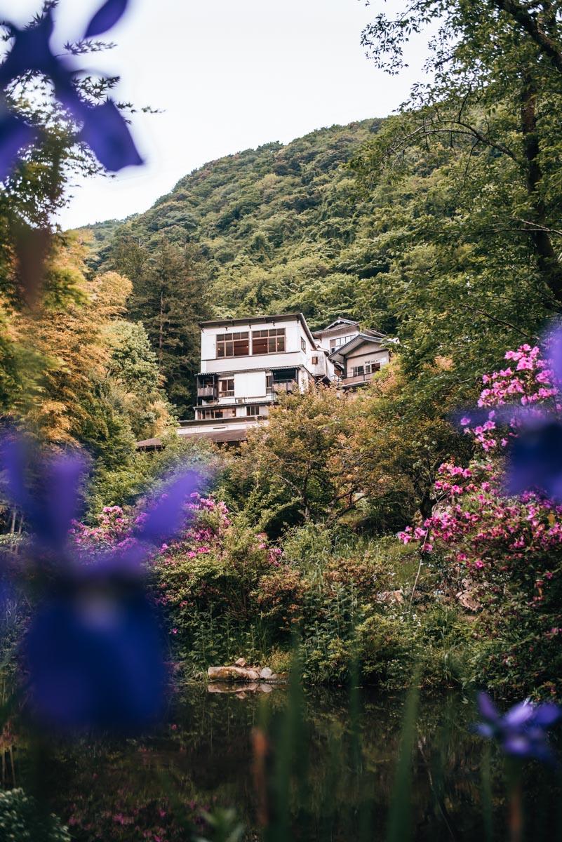 Hakone Ryokan Tips