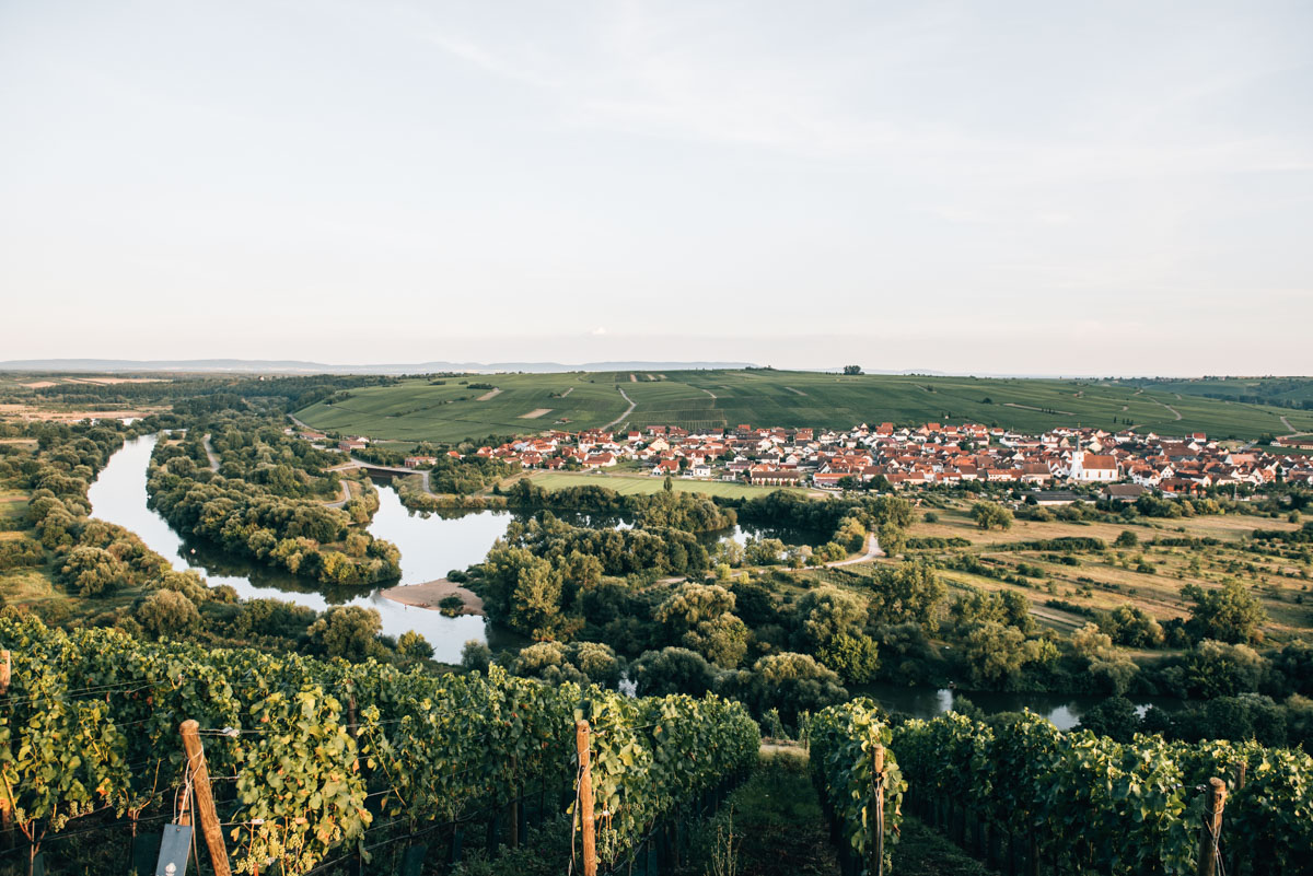 Vogelsburg Ausblick