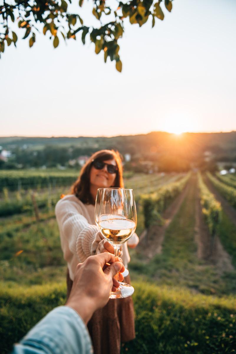 Weingut Kamptal Tipps
