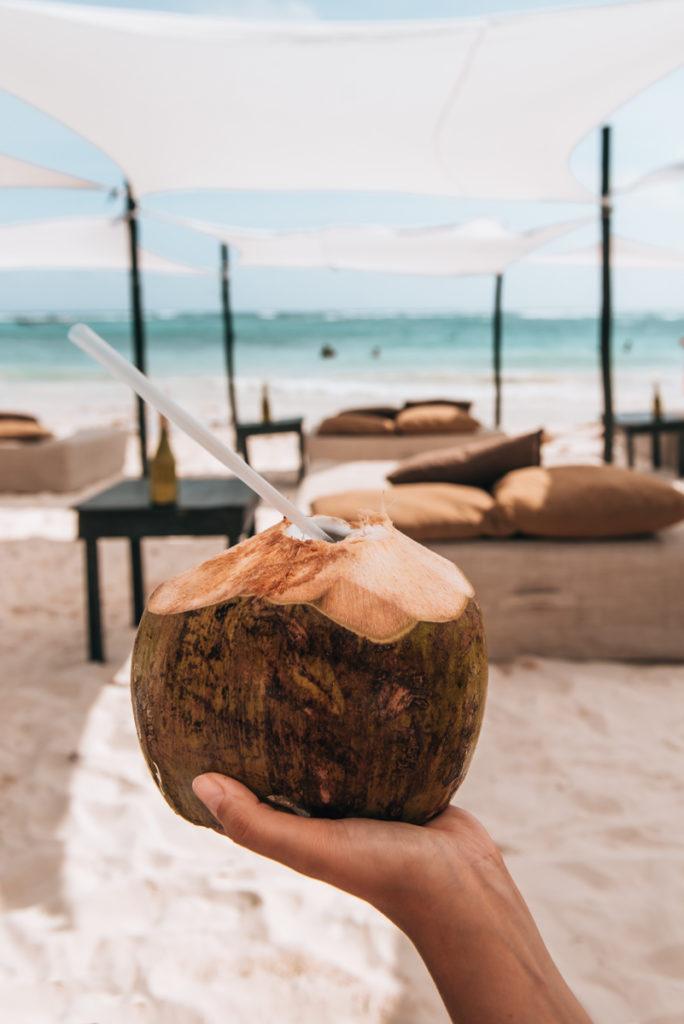 Yucatan Kokosnüsse