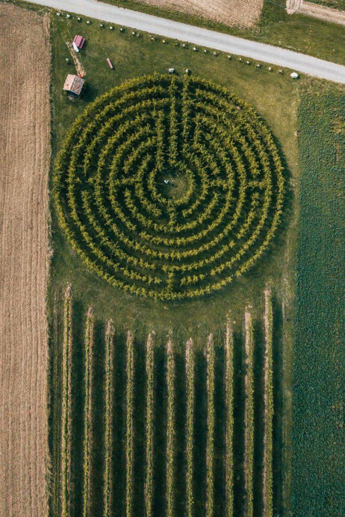 Weingartenlabyrinth