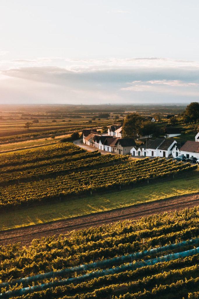 Weinviertel Ausflugsziele