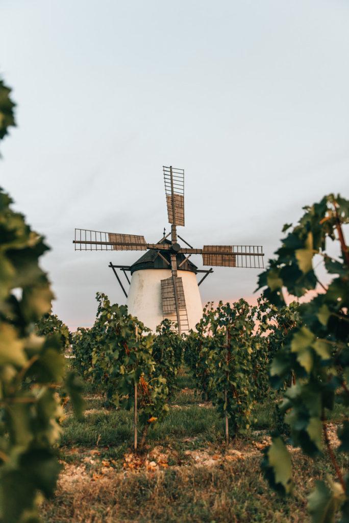 Weinviertel Reiseblog
