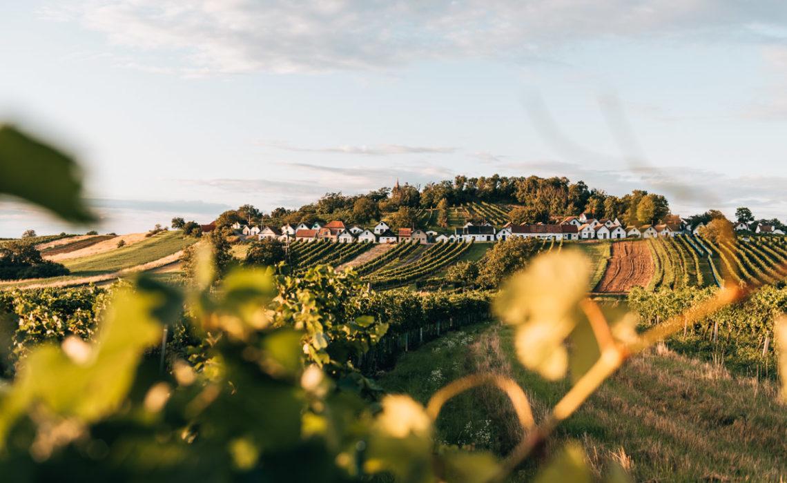Weinviertel Tipps